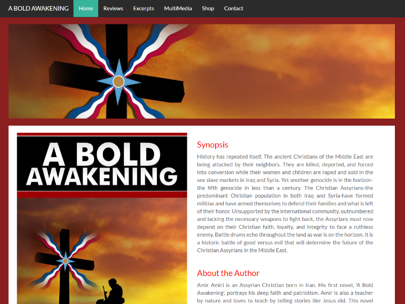 A Bold Awakening - Book